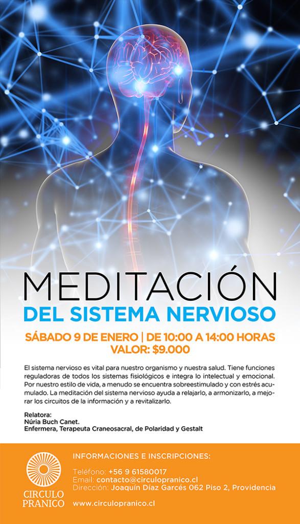 Taller de meditacion del sistema nervioso